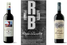 Lote Vinos 92 puntos y 94 puntos Rioja y Ribera: Finca El Encinal - Rioja Bordón Selección - Barón D´Anglade Reserva - Masmit